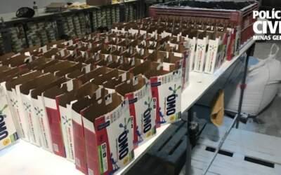 PC apreende cerca de 25 toneladas de sabão em pó falsificado