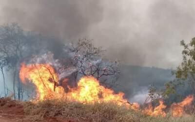 Incêndio atinge Serra do Elefante em Mateus Leme